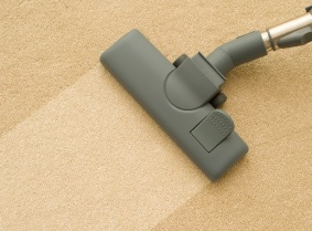 Professional Carpet Cleaning Advantage