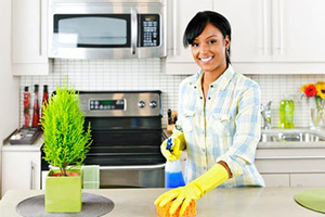 Regular Maid Service in Houston